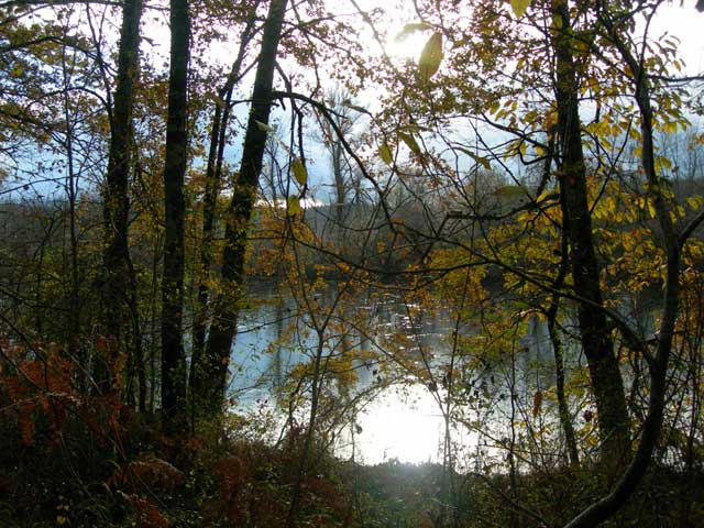 By The Dordogne, Late Fall