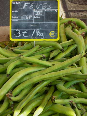 Fava Beans At The Market
