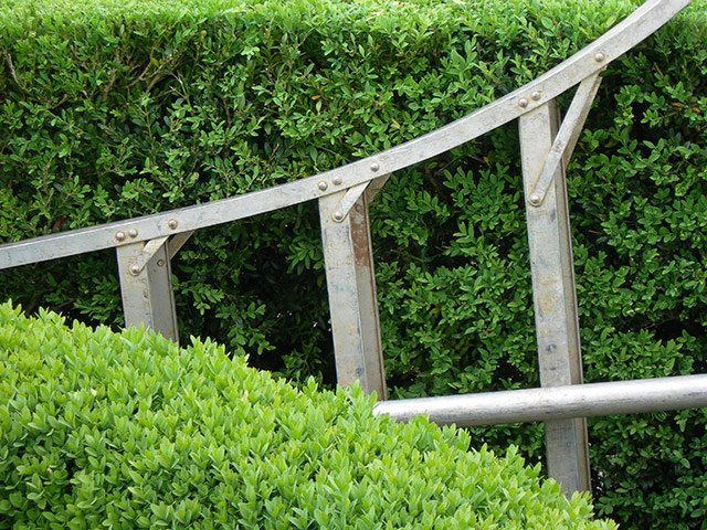 Ladder Amidst Boxwood- Jardin Marquayssac