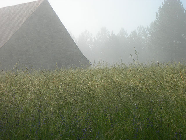 Barn, Mist and Tall Grass, Early Morning