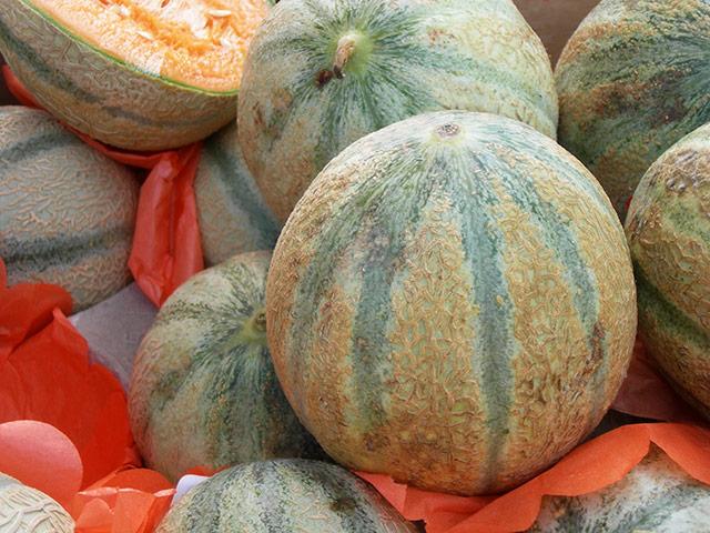 Charente Melons, Souillac Market