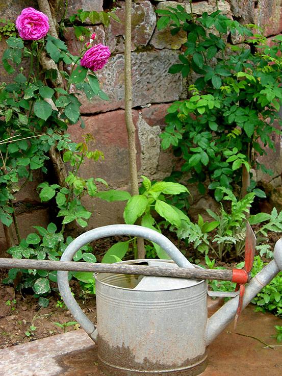 Gardener's Corner, Collange La Rouge